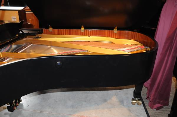 August Forster 215 Grand Piano Michelles Piano In