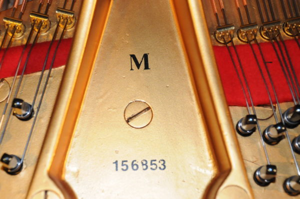 Steinway M Grand Piano 156953 - Picture 14
