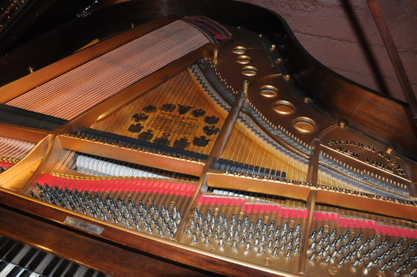 Steinway M Grand Piano 156953 - Picture 13