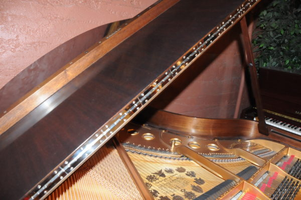 Steinway M Grand Piano 156953 - Picture 8